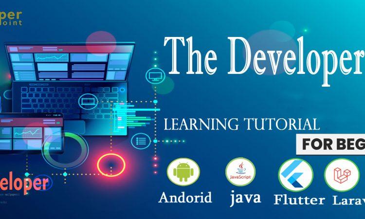 The Developer Point